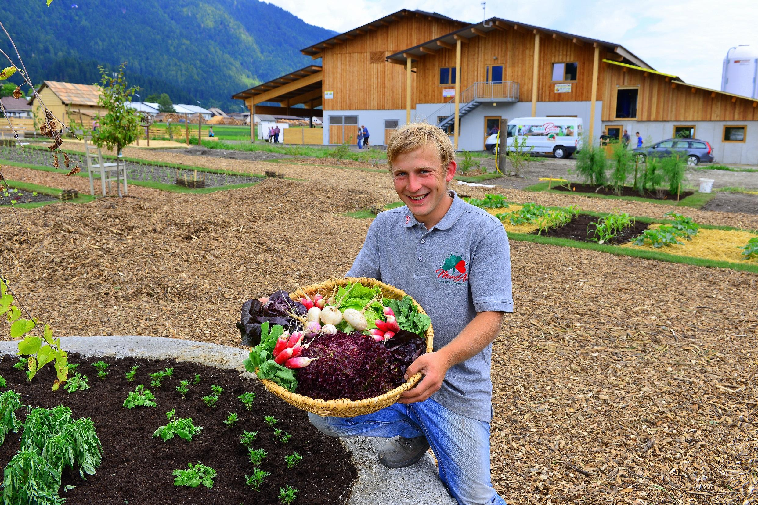 Beste Spielothek in Kirchbach im Gailtal finden